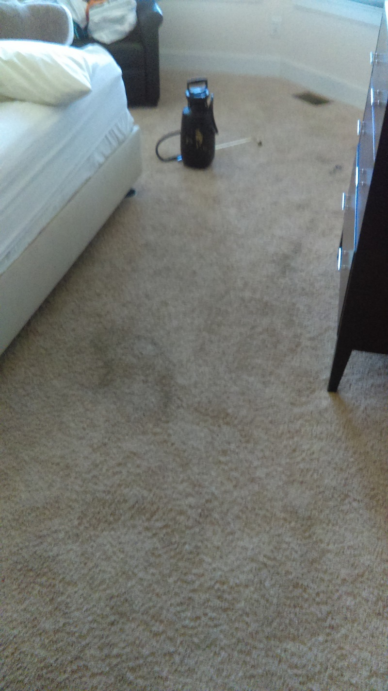 Before And After Bigg Time Carpet Amp Upholstery Cleaning
